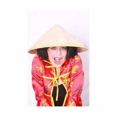 Chinese hoeden voor carnaval