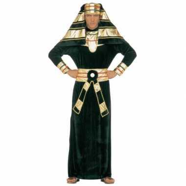 Faraopak voor volwassenen carnaval