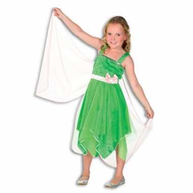 Groen elfjes jurkje voor meisjes carnaval