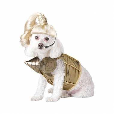 Honden kostuum popster voor carnaval