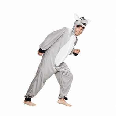 Huispak ezel voor kinderen carnaval