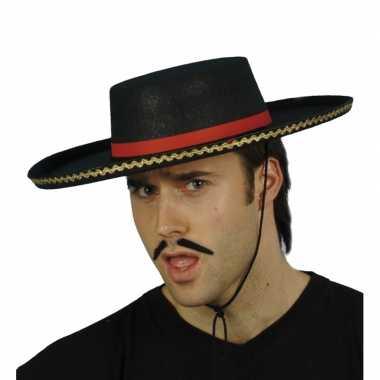 Spaanse hoeden voor carnaval