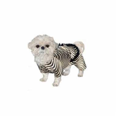 Zebra outfit voor honden carnaval